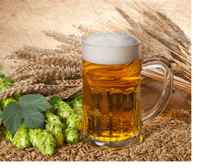beer and prostate pain