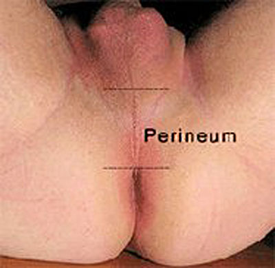 perineum massage