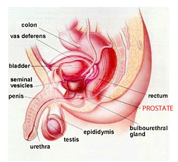 symptoms of prostate problems