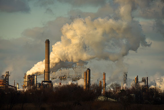 toxic pollution and prostate gland